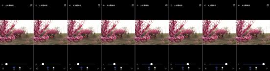 踏青杯朋友圈摄影大赛指南,如何用手机拍出大片感!